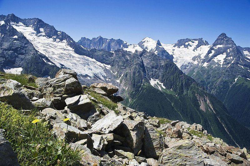 домбай, горы, камни, ледник, цветы ***photo preview
