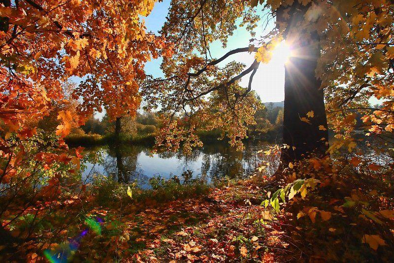 фото, пейзаж, краски, осень, октябрь октябрь уж наступил...photo preview