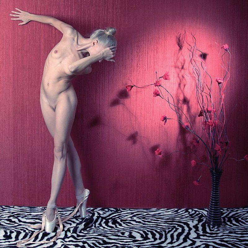 балерина photo preview