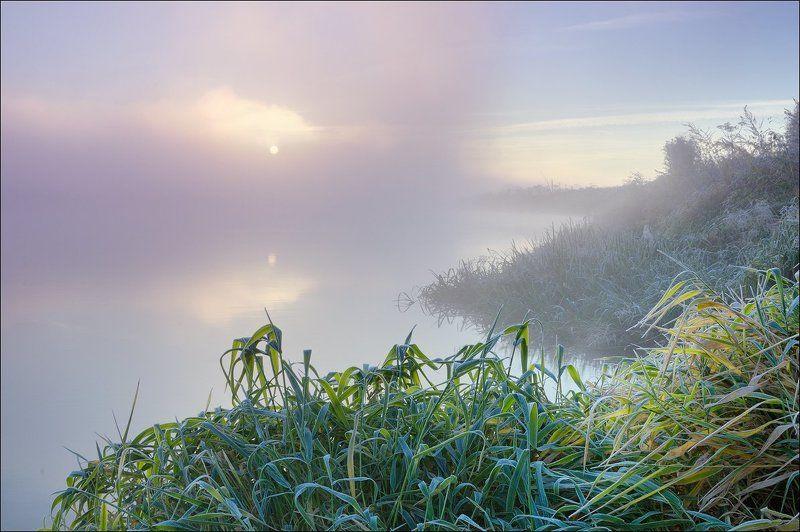 Туманным утром у рекиphoto preview