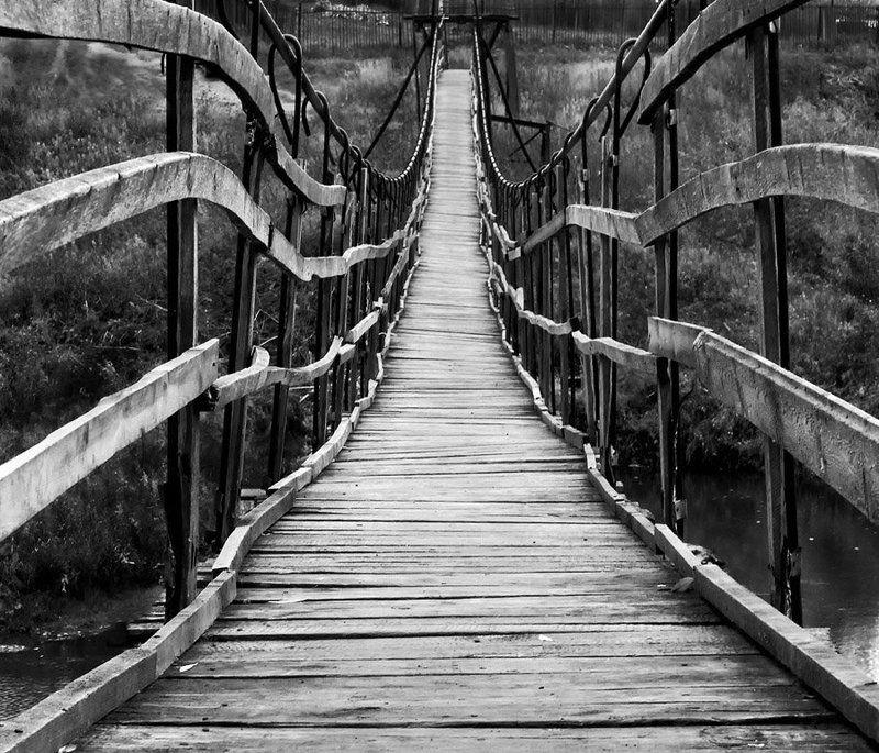 мост мост-паукphoto preview