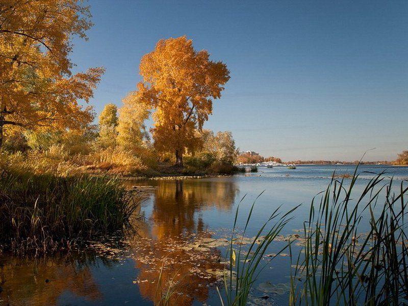 осень, золото, река, киев, днепр photo preview