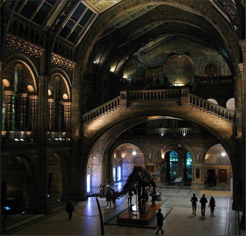 ночь, музей Ночь в музееphoto preview