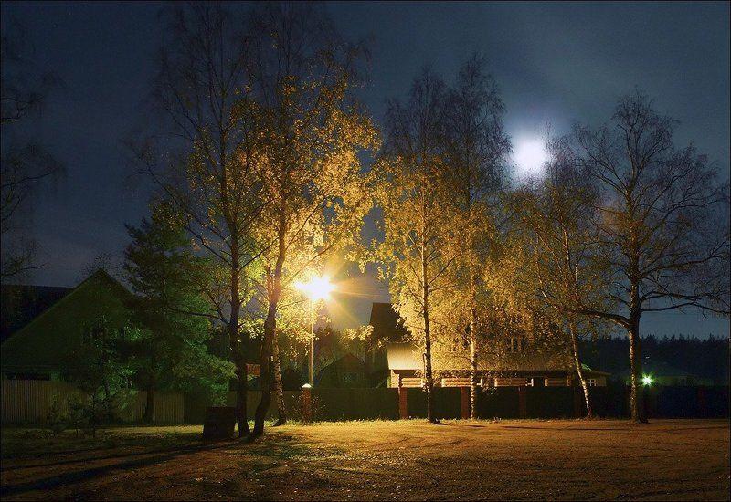 осень, утро, деревня, соколово Осеннее утроphoto preview