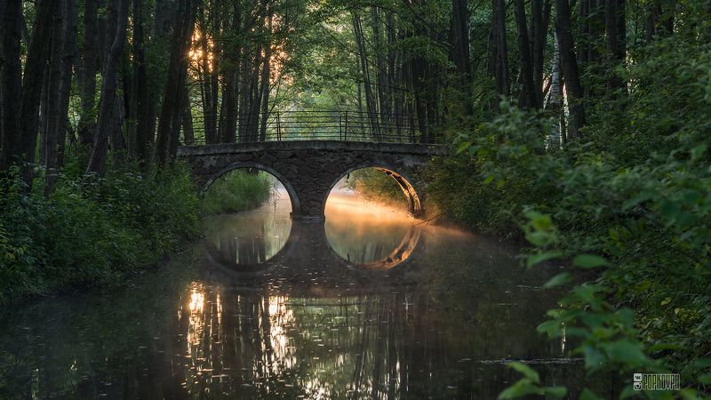 рассвет парк свислочь дрозды минск заря туман отражение мост свет Рассвет в л/п Дроздыphoto preview