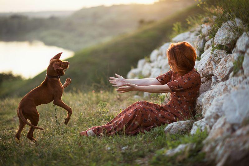 собака, друг, дружба, счастье, любовь, преданность, верность Рыжая любовь...)photo preview