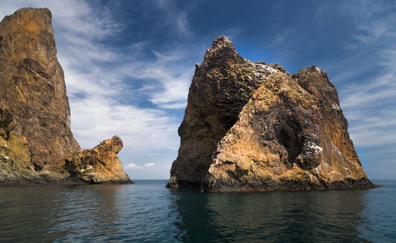 морской лев, золотые ворота Противостояниеphoto preview
