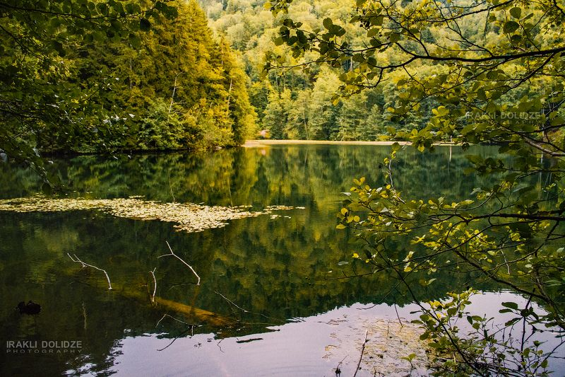 lake, relax, travel, camping, landscape, nature, photography, natgeo, reflection, trees, autumn,  Bateti Lakephoto preview