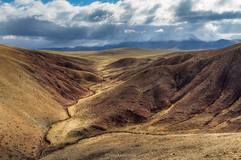 landscape, scenic, nature, travel, outdoor, view, tourism, steppe, spring, mountains, snow, sky, high, grass, clouds, yellow, red, ginger, Altai Сайлюгемский бархатphoto preview
