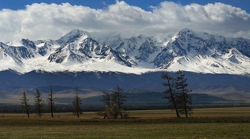 Северо-Чуйский хребетphoto preview