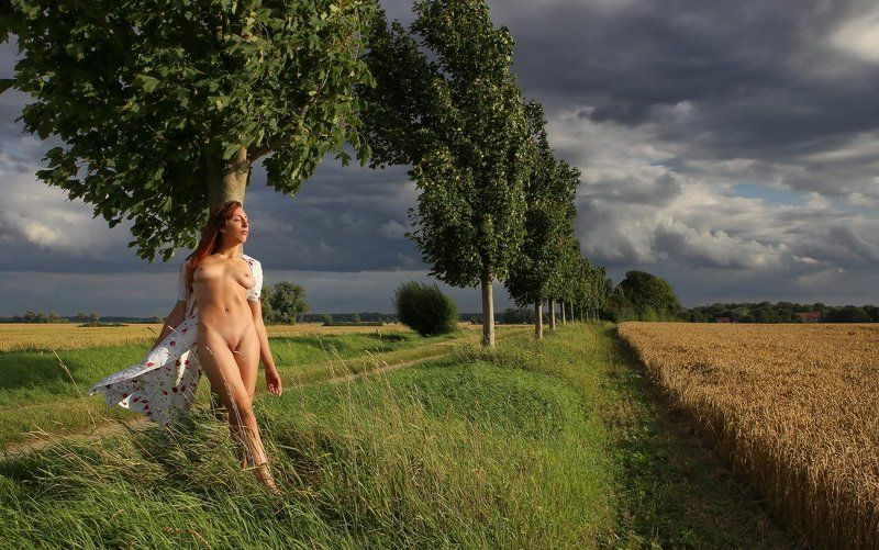 tree, field, summer, nude Abends am Baumphoto preview