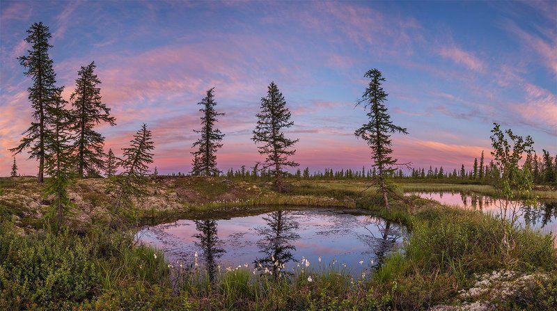сибирь, север, лето Летний вечерphoto preview