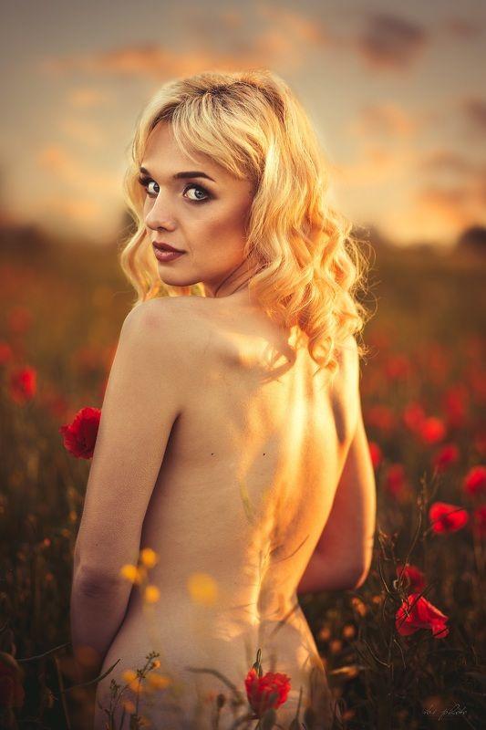 portrait, woman, blonde Golden hourphoto preview