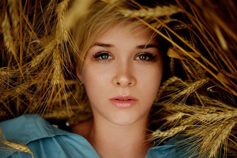 Девушка, поле, глаза, отражение Отражениеphoto preview