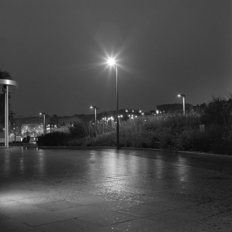парк. вечер. \