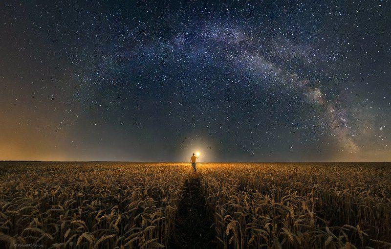 звезды, млечный путь, поле ***photo preview