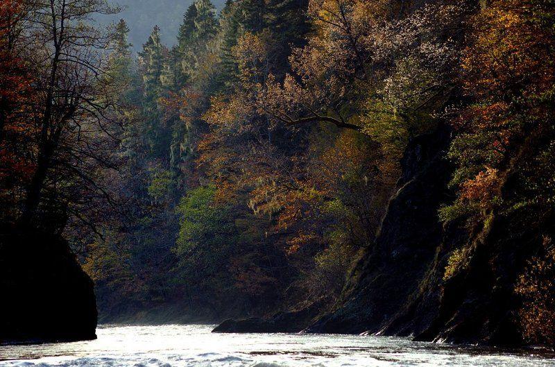 кипящая, река , осень заповедник кавказ берег Кипящая рекаphoto preview