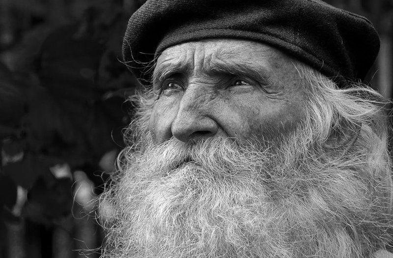 портрет, печаль, старик, взгляд И мудрость и печаль ...photo preview