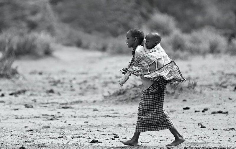 кения, масаи Домойphoto preview