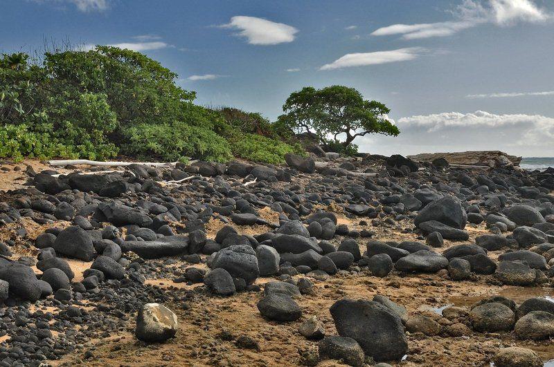 пейзаж, море, отлив, камни Отливphoto preview