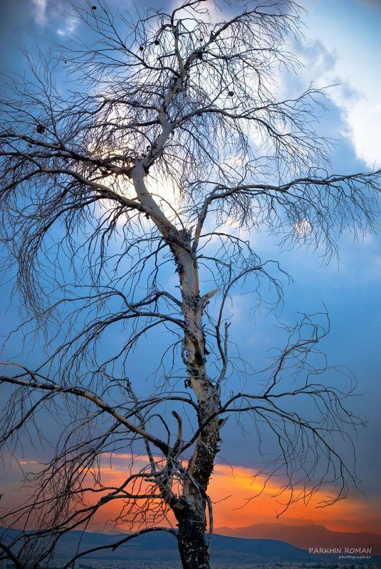 greece, pendeli, sunset, athens, ellada Solitude...photo preview
