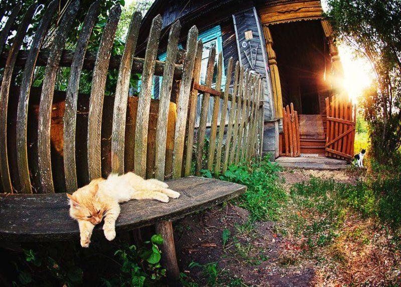 wwwest Дом дедушкиphoto preview