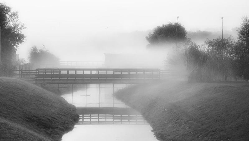 morning, fog утроphoto preview