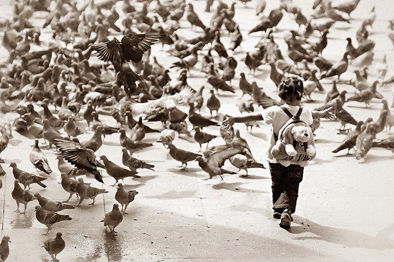Девочка и голубиphoto preview