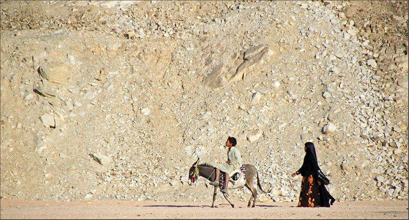 в, город, дети, ослик, египет, пустыня В городphoto preview
