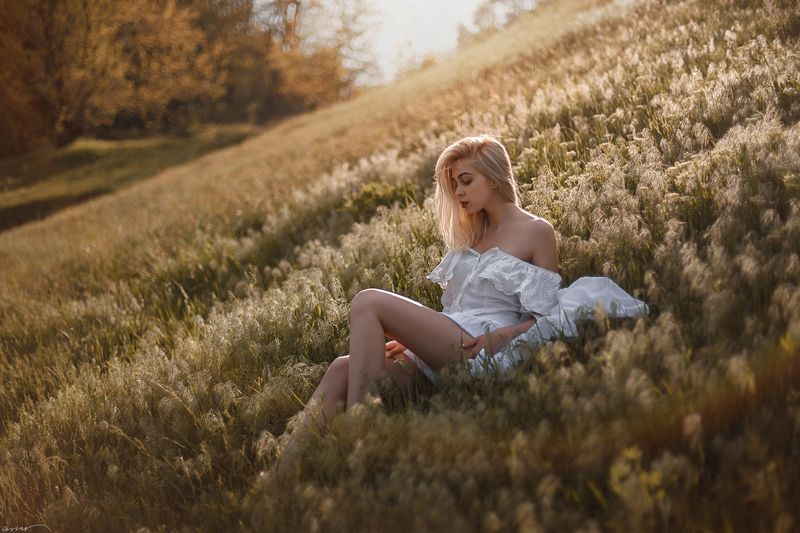 summer, sunset, sun, girl, field, nature, grass Одним летним днём...photo preview