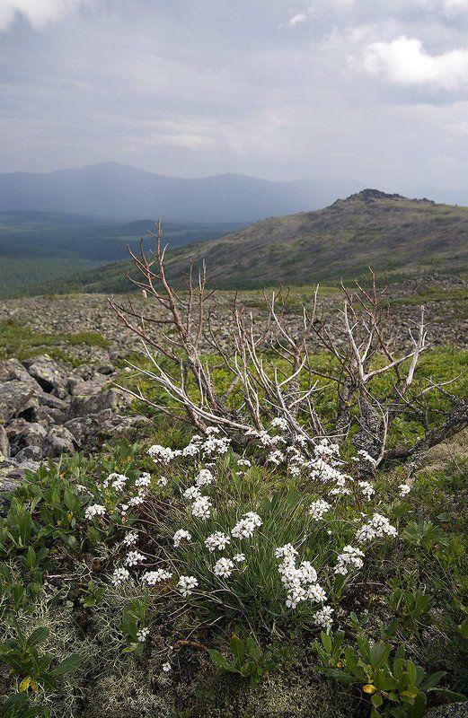 урал, горы Тихая нежностьphoto preview