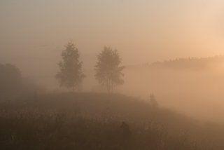 Укутаны туманом