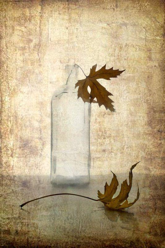 Скоро осень....photo preview