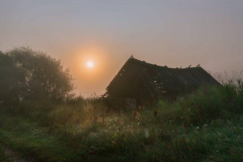 россия, природа, река, угра, смоленская область, август, 2017, рассвет, туман, nikon, пейзаж, сарай, утро, солнце, рассвет photo preview