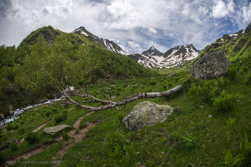 горы, предгорья,река,горная река,ручей, хребет, вершины, пики, озеро,ущелье,архыз,снег,скалы, холмы, долина, облака, путешествия, туризм, карачаево-черкесия, кабардино-балкария, северный кавказ ПО ДОРОГЕ НА ДУККИНСКИЕ ОЗЁРАphoto preview