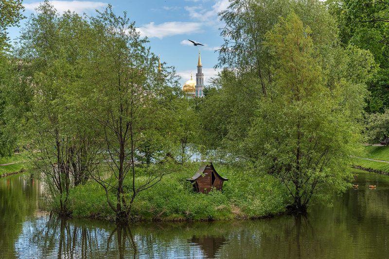 Москва, Moscow, парк, пруд, остров, домик, мечеть, птица, деревья, Екатерининский парк Пролетая над...photo preview