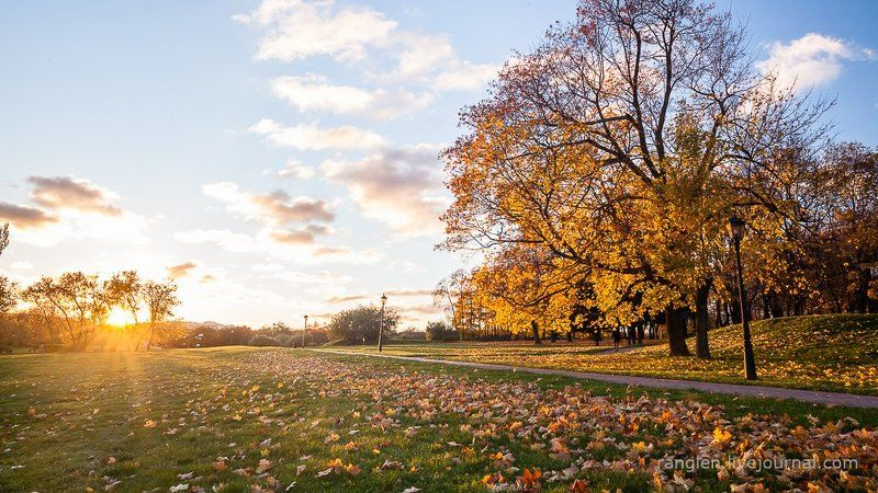 коломенское, москва, осень, золотая, небо, пейзаж Перед закатомphoto preview