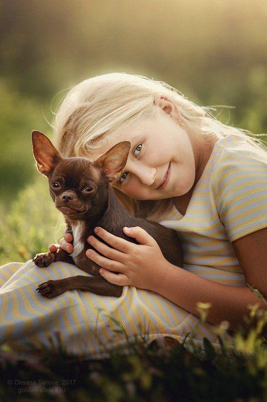 дети, девочка, лучшие друзья, чихуахуа, собака, лето Подружкаphoto preview