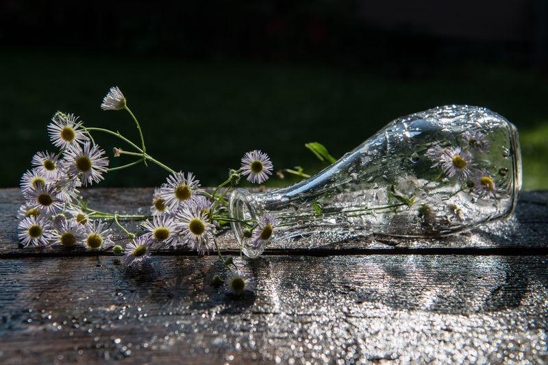Про вазу и цветы..photo preview