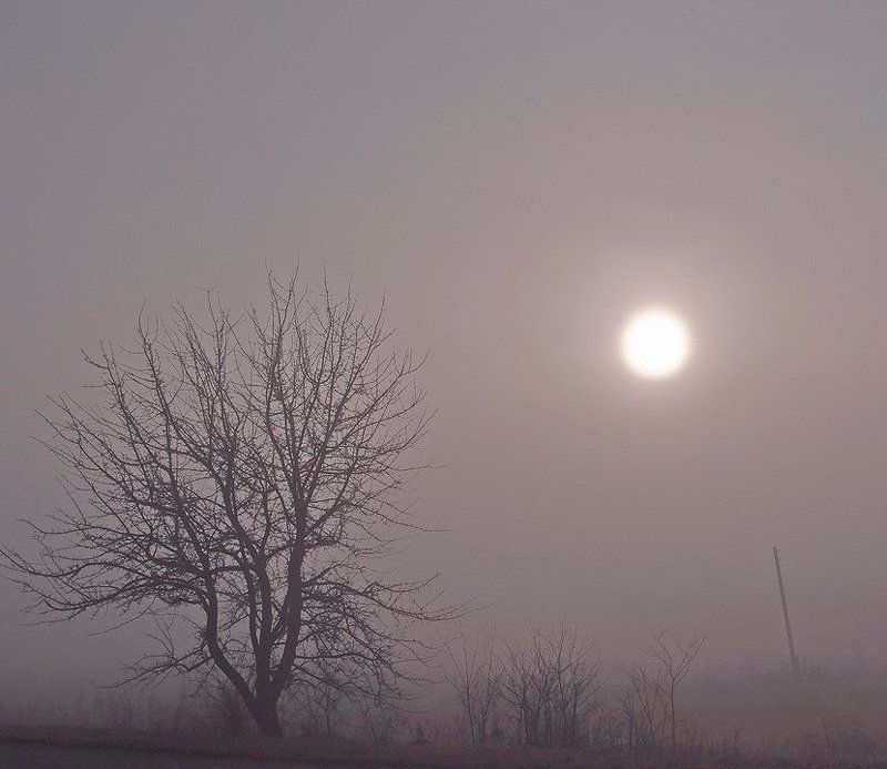 ...в тумане главное не спешить...photo preview