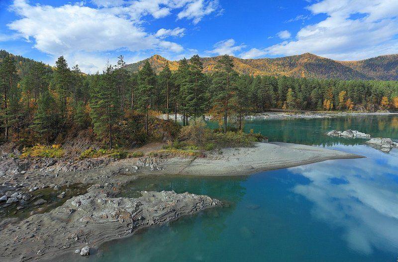 природа, пейзаж, алтай, катунь, лес, осень, река, горы, остров Осенняя красота бирюзовой Катуниphoto preview