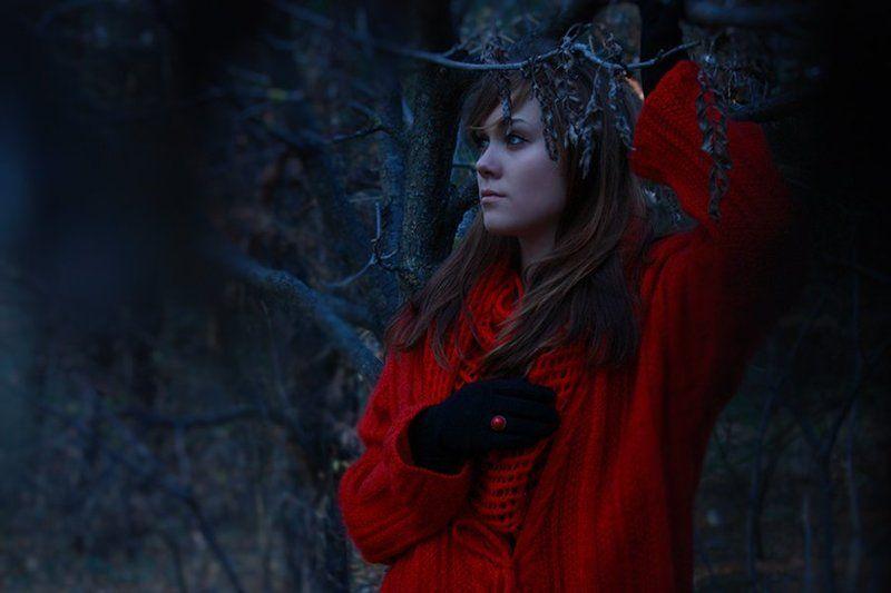 в таинственном лесу..photo preview