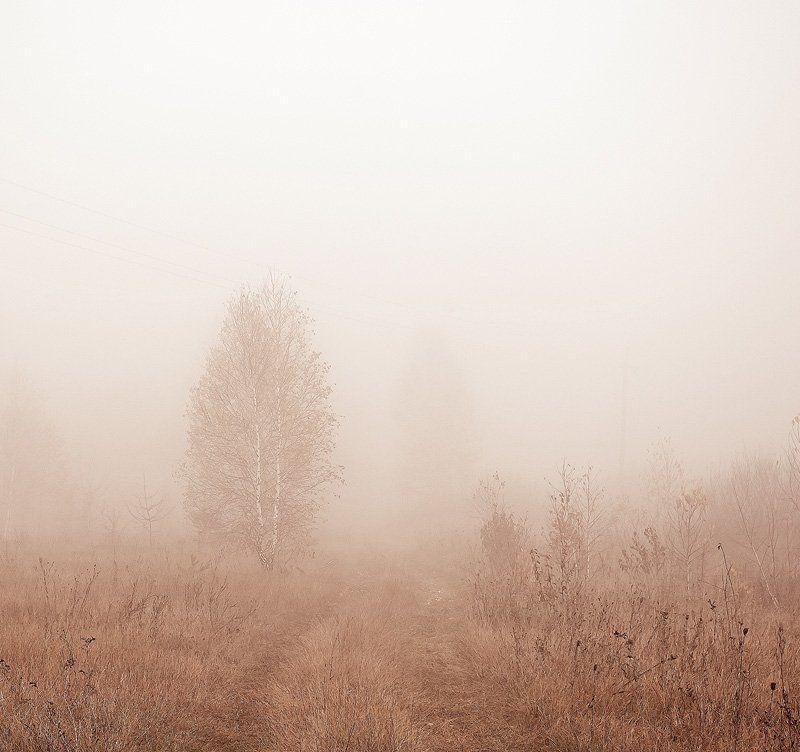 ....как в тумане тают силуэты...photo preview