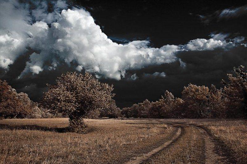 природа Отражениеphoto preview