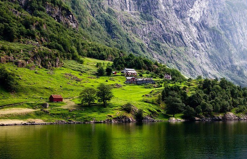 норвегия, фьорд На берегу фьордаphoto preview