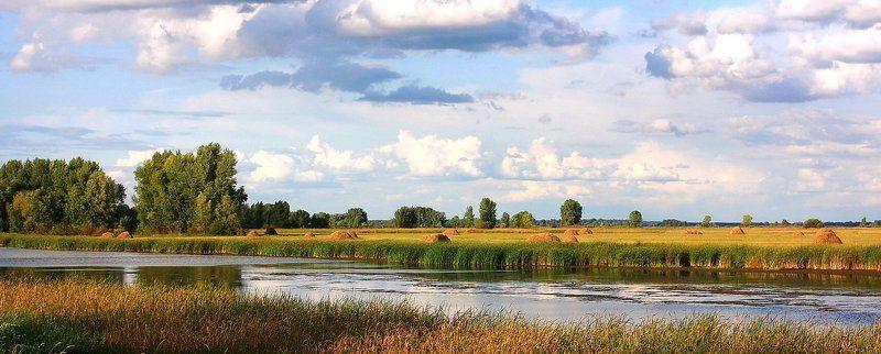 речка, лето, стога, лес У речки.photo preview
