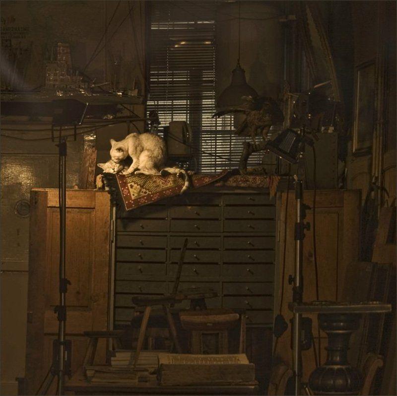 кошки, любовь, интерьер мы здесь одни... и я тебя люблю..photo preview