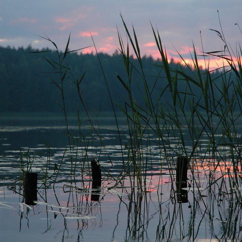 озеро, селигер Заплавская гладь ...photo preview