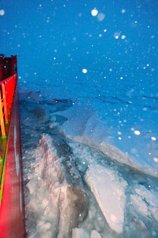 льды, карское море, надежда ЧТО ЛЬДЫ ДАВИТЬ, ЧТО ТАК ИДТИphoto preview