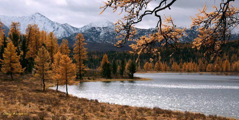 улаган,озеро на перевале,горный алтай, сентябрь,озеро,олег кулаков,oleg kulakov Улаган .Озеро. Сентябрь.photo preview